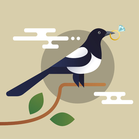 clever: Vector illustration of magpie, holding the diamond.