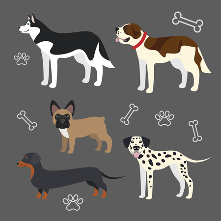 funny dogs: Set of vector funny dogs