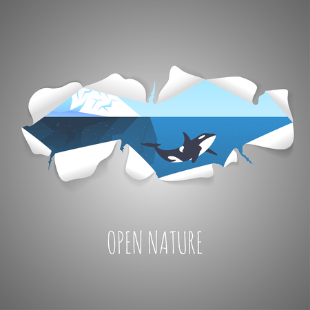berg: Torn paper with the illustration of iceberg in the sea and killer whale inside. Nature vector background with Torn paper.