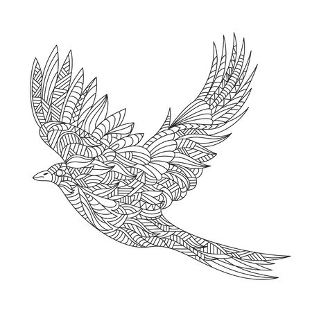magpie: Vector monochrome hand drawn zentagle illustration of magpie. Coloring page with high details isolated on white background. Illustration