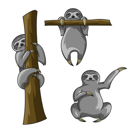 Vector set of cute sloths. Cartoon style. Sloth print for t-shirt. Vector art or poster. Happy sloth climbing on the tree. Sloth hanging on a the tree.