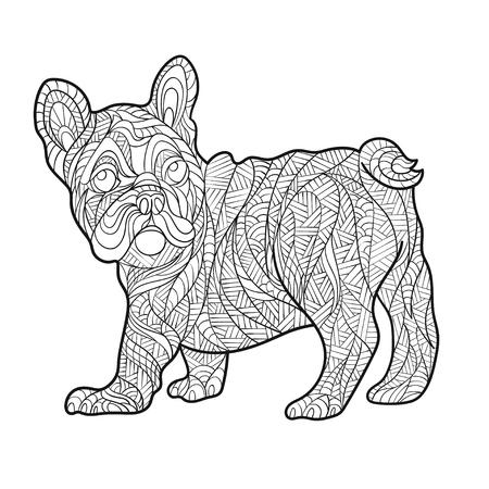 Vector monochrome Hand zentagle Illustration von Französisch Bulldog gezogen. Malvorlage mit hohen Details auf weißem Hintergrund. Boho-Stil. Design für T-Shirt, Grußkarte oder Poster.