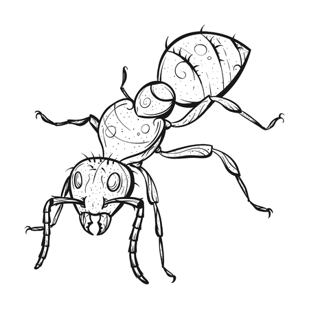 Vector monochrome hand drawn zentagle illustration of ant. Coloring page with high details isolated on white background. Boho style. Design for T-shirt or poster.