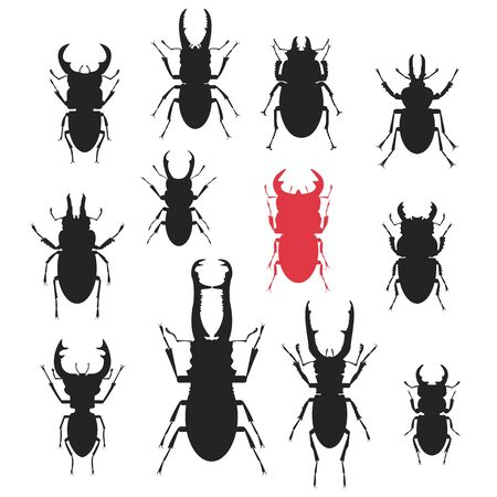 beetles: Vector silhouettes of different kinds of Stag beetles.