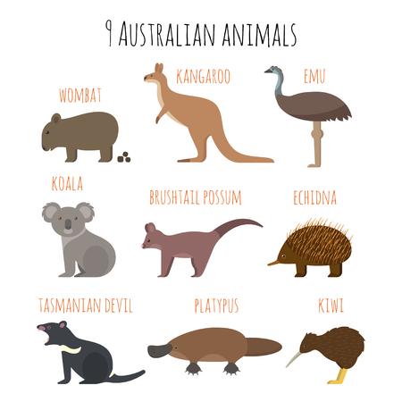 Vector conjunto de iconos de animales australianos. Emu, wombat, kiwi, koala, canguro. estilo plano.