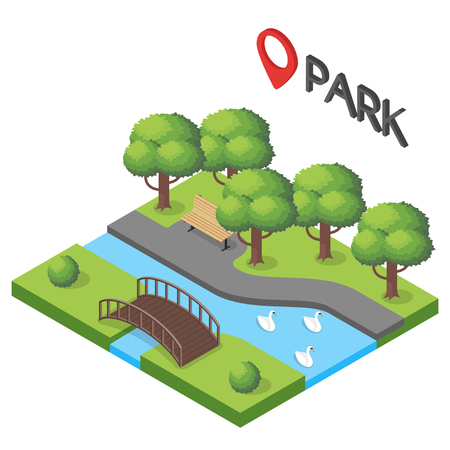 tranquil scene on urban scene: Vector isometric illustration of park. Pond with swans.