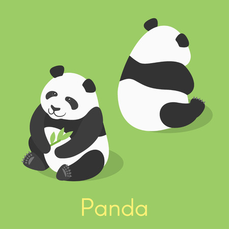 Vector isometric illustration of panda. Panda holding bamboo branch.