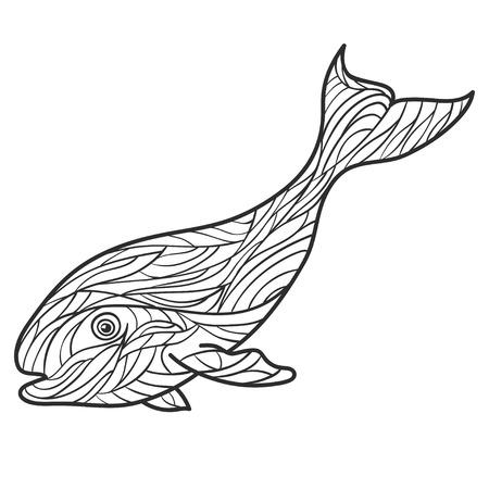 Vector Zwart Wit Hand Getrokken Zentagle Illustratie Van Walvis