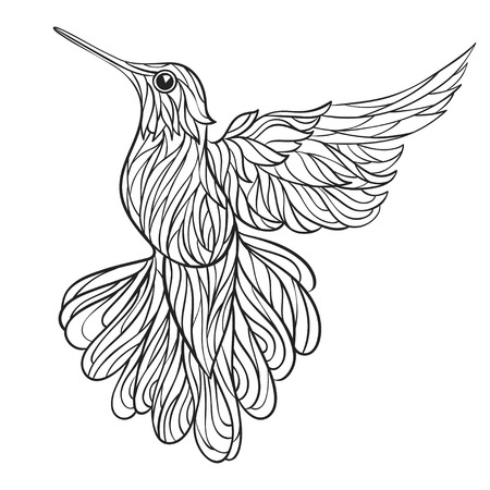 Vector monochrome hand drawn illustration of colibri. Coloring page with high details isolated on white background. Boho style. Design for T-shirt, greeting card or poster. Illustration