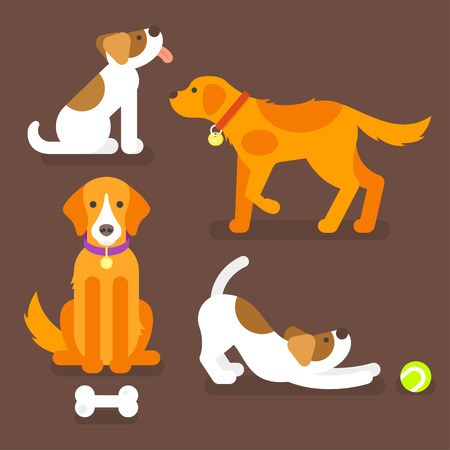Vector flat style illustration of funny dogs at home. Pet plays with ball. Brown background.