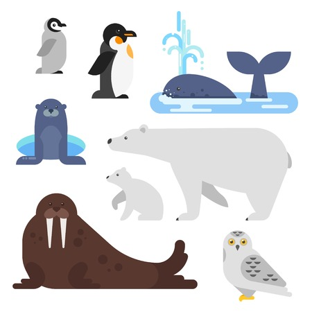 Vector flat style set of arctic animal. Walrus, whale, penguin, bear. Isolated on white background.