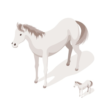 Isometric 3d vector illustration of large and small white horses. Icon for web. Isolated on white background.