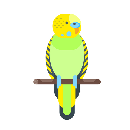Vector flat style illustration of budgerigar. Icon for web. Isolated on white background.