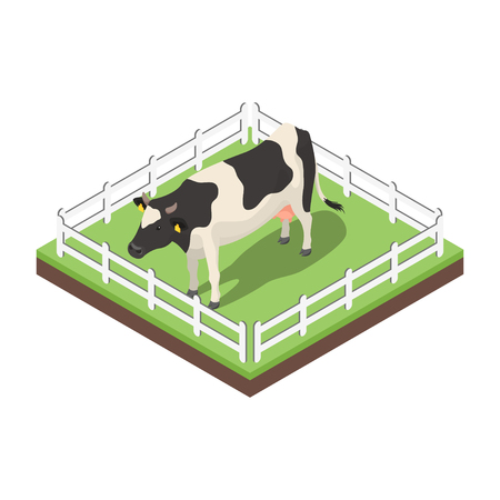 midwest: Isometric 3d vector illustration of cow. Icon for web. Isolated on white background. Illustration