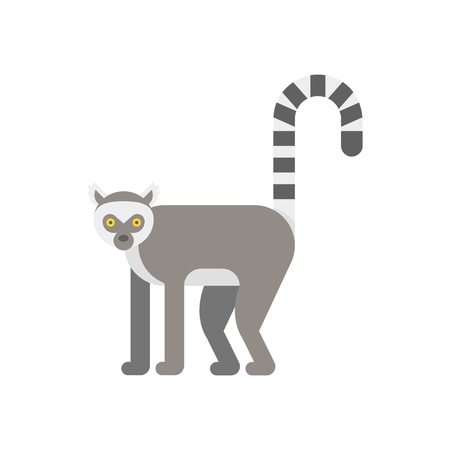 Vector flat style illustration of lemur. Icon for web. Isolated on white background.