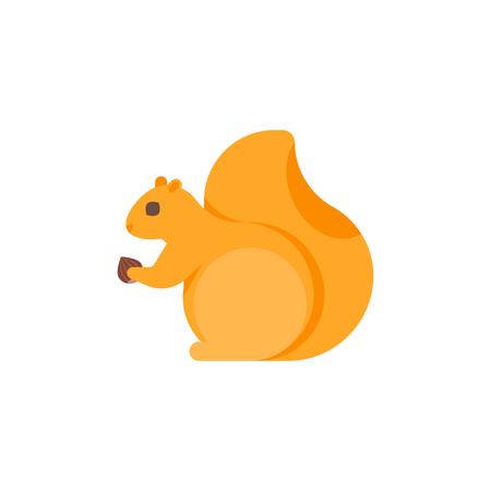 Vector flat style illustration of squirrel. Icon for web. Isolated on white background. Illustration