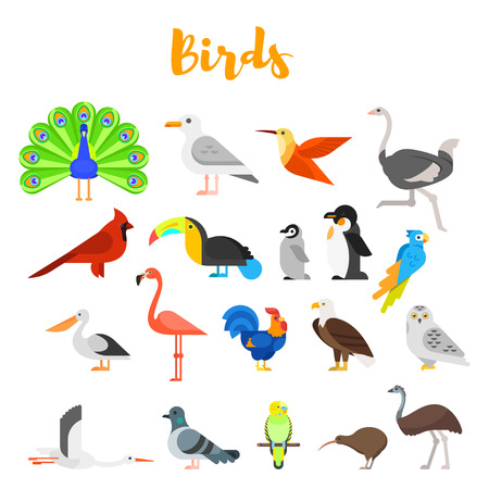 Vector flat style set of birds. Icon for web. Isolated on white background.