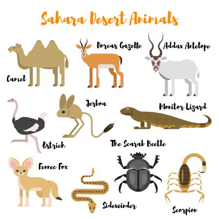 Vector flat style set of desert wild animals. Icon for web. Isolated on white background. 일러스트