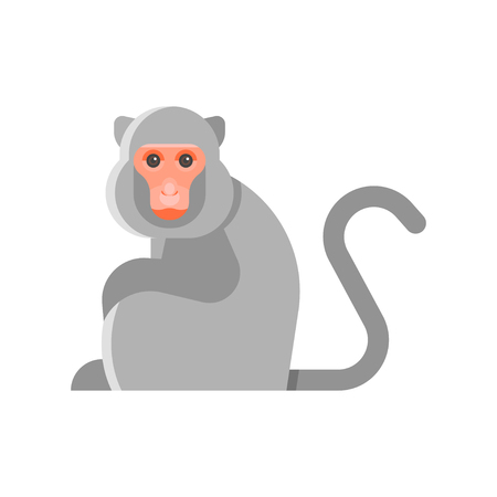 Vector flat style illustration of monkey. Icon for web. Isolated on white background.