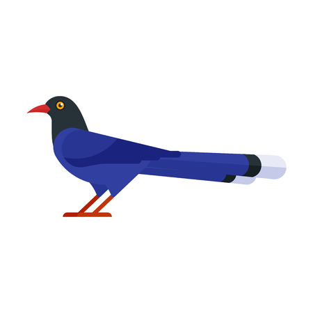 Vector flat style illustration of Taiwan blue magpie. Icon for web. Isolated on white background.