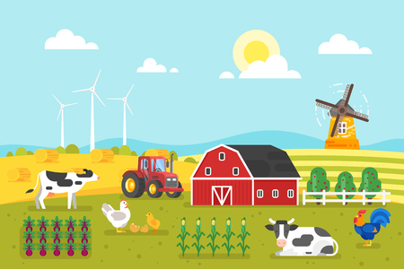 Vector flat style illustration of farm with cows and chicken. Background for poster. Wheat field in good sunny day.