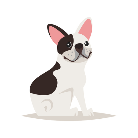 Vector cartoon style illustration of cute french bulldog dog, isolated on white background.