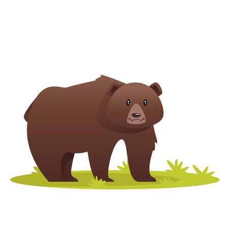 Vector cartoon style illustration of  bear, isolated on white background.
