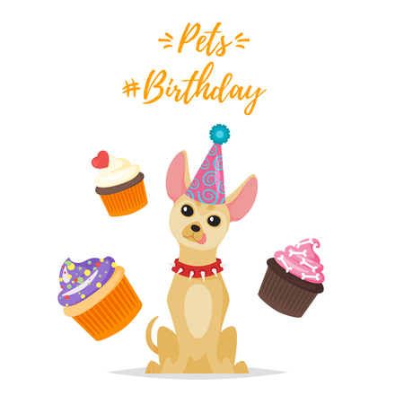 Vector  cartoon style illustration of Dog Birthday party greeting card with chihuahua dog in festive cone hat and dog treat on white background.