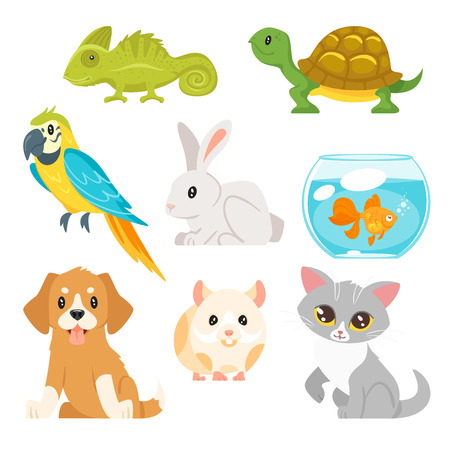 Vector cartoon style set of home animal pet - cat, dog, hamster and others. Isolated on white background. Stock Illustratie