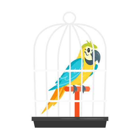 Vector cartoon style illustration of home animal pet parrot in birdcage. Isolated on white background.