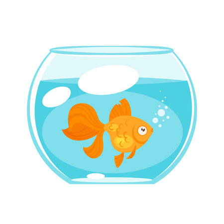 Vector cartoon style illustration of home animal pet - gold fish in aquarium. Isolated on white background. Illustration