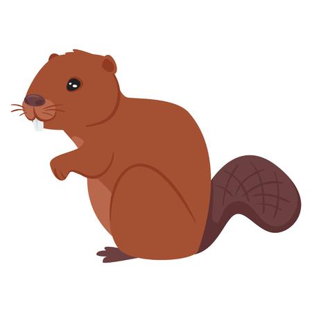 Vector cartoon style illustration of zoo animal - beaver. Isolated on white background. Vettoriali