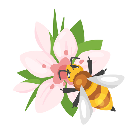 Vector cartoon style illustration of a bee sitting on the blooming pink flower. Isolated on white background.