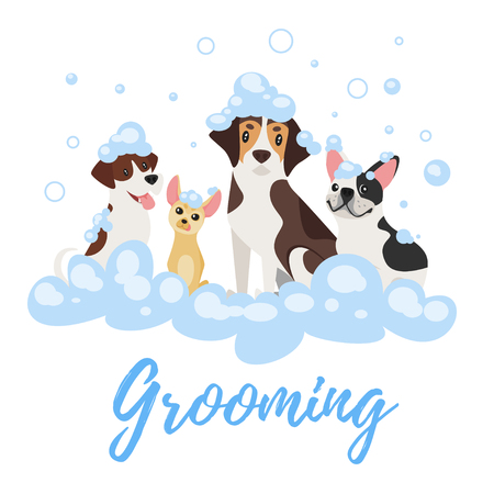 Vector cartoon style illustration of dogs of different breeds in soap foam. Grooming concept.