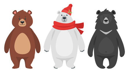 Cartoon style vector set of three different bears: brown grizzly, black and polar. Isolated on white background.