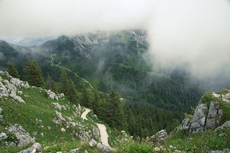 pinetree: Foggy view from top of the mount Jenner, Bavaria, Germany