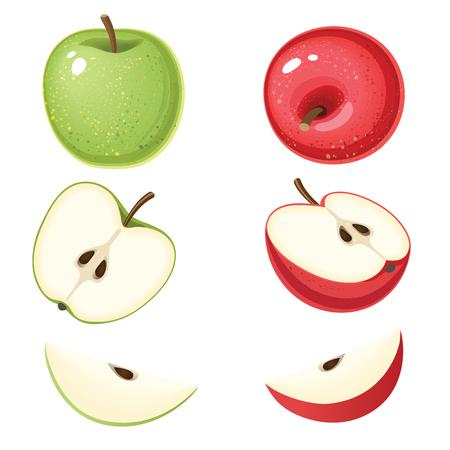 Illustration vectorielle de pomme verte et rouge bio avec des tranches isolées sur fond blanc