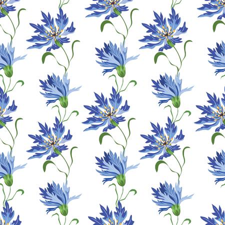 Seamless vector pattern with blue cornflowers on a white background Ilustração Vetorial
