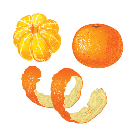 Set of whole tangerine, peeled mandarin and tangerine skins