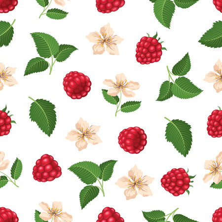Seamless pattern with raspberry and blossom. Vector illustration
