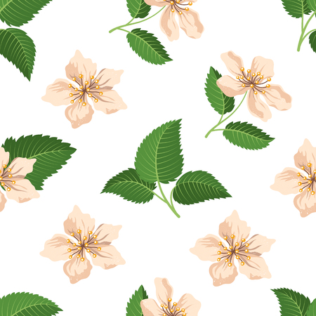 Seamless pattern with raspberry blossom. Vector illustration