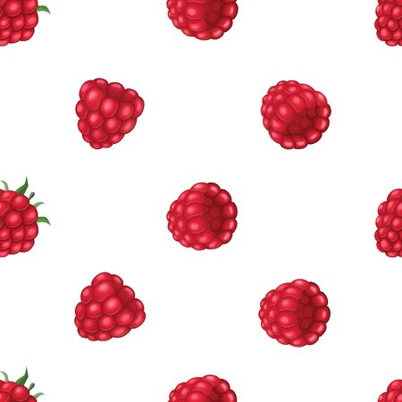 Seamless pattern with raspberry. Vector realistic illustration