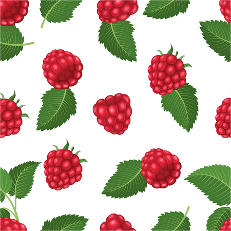 Seamless pattern with raspberry and leaves. Vector illustration