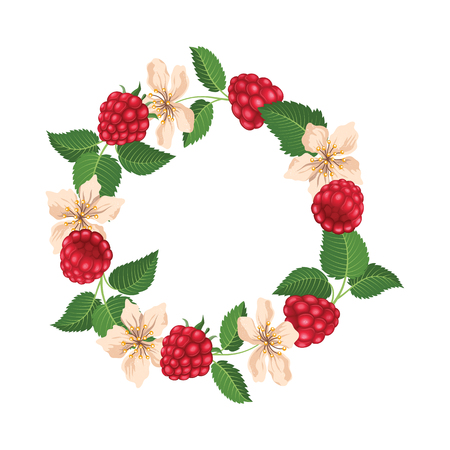 Round frame with raspberry and blossom. Vector illustration Ilustrace
