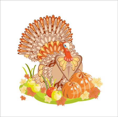 Turkey and vegetables