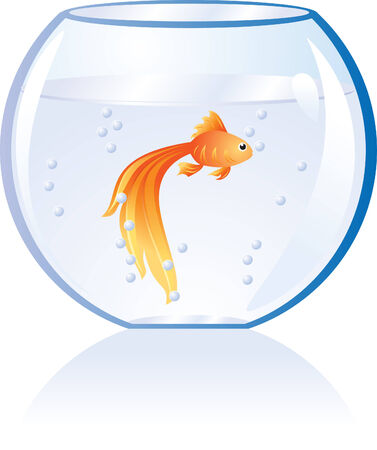 Fish Stock Vector - 2475920