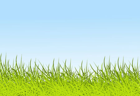 Sky and grass background Stock Vector - 3070035