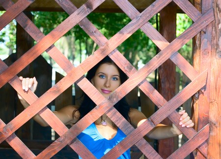 institutional: Pretty girl and wooden web for your  design Stock Photo