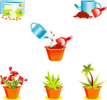 plants growing: Icone sulle piante finestra crescente di fioraio Vettoriali