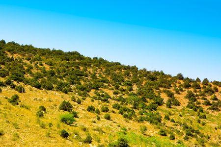 Beautiful Summer Crimean hill landscape photo